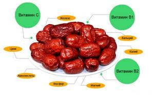 Польза и вред фиников для организма: калорийность и суточная норма, содержание витаминов и микроэлементов