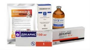 Анкилостомидоз: что это такое, симптомы заболевания, методы диагностики и лечения у человека, советы врачей