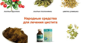 Как лечить хронический цистит в домашних условиях: аптечные и народные средства, рекомендации по применению