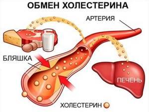 Гипертония: тонкости борьбы с высоким давлением