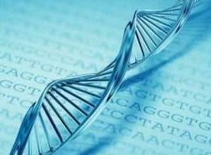 Что такое агранулоцитоз: симптомы и механизм развития заболевания, методы лечения патологии и прогноз