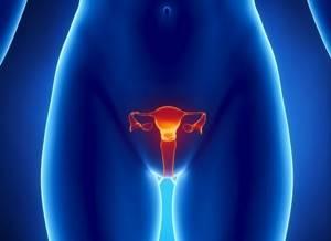 Симптомы гарднереллеза у женщин: основные показания к назначению лечения и способы профилактики заболевания, отзывы пациентов