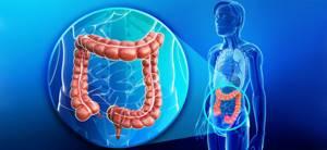 Иерсиниоз: причины возникновения болезни, характерные симптомы и способы лечения