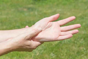 Орнитоз у человека: причины возникновения, типичные признаки, течение заболевания, меры лечения и профилактики
