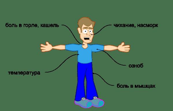 Симптомы ОРВИ у взрослых: разновидности вирусов и характерные признаки инфицирования, лечение патологии медикаментами и народными средствами, список распространенных препаратов для профилактики заболевания