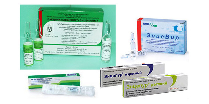 Клещевой энцефалит: возбудитель заболевания, клинические формы, методы лечения и профилактические действия