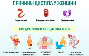 Острый цистит у женщин: причины воспаления, характерные симптомы и способы лечения