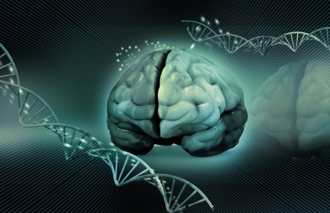 Деменция: описание патологии, причины возникновения и классификация заболевания, стадии развития и прогноз продолжительности жизни при последней стадии слабоумия